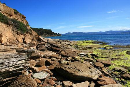 Maria Island Tasmania Australia