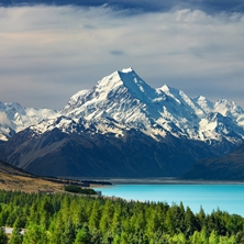 New Zealand Wonderland