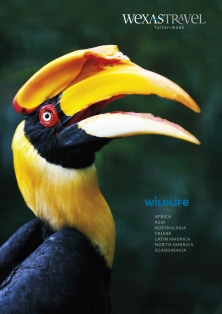Wexas Travel brochure for Uganda safaris