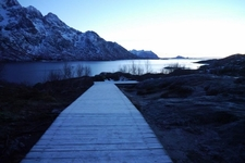 Just back from: The Lofoten Islands
