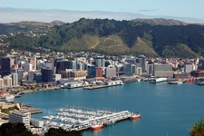 24 hours in Wellington