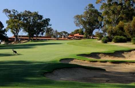Perth to welcome international golf stars