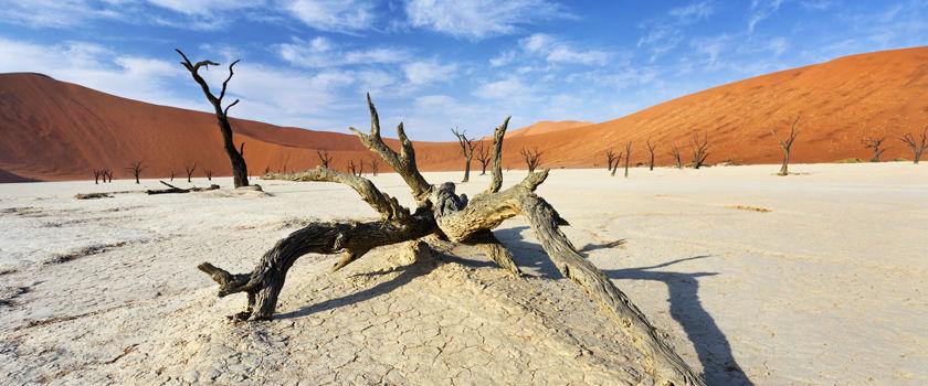 Namibia holidays and safaris