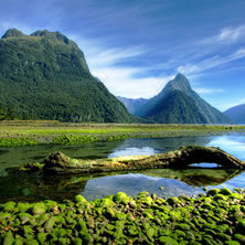 Milford Sound &amp; Fiordland
