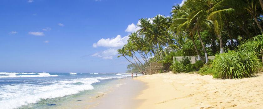 Sri Lanka's Beaches