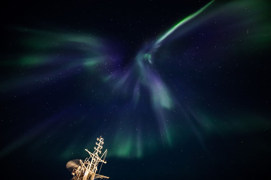 Northern Lights seen from the decks of Silver Cloud. Photo by Lacey Dawson