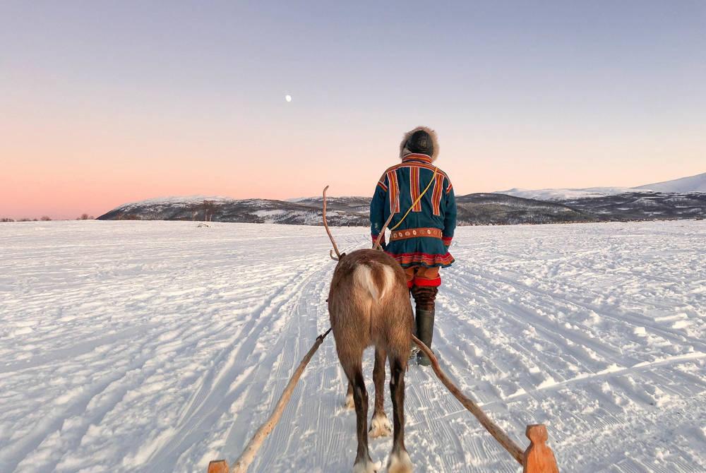 Reindeer Sledding Amp Sami Culture With Meal Holidays 2020
