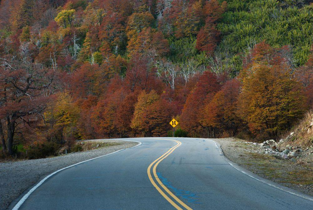 Seven Lakes Road (Route 40), Neuquen Province