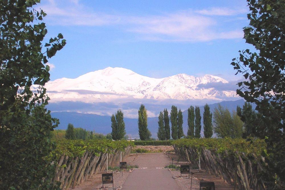 Cavas Wine Lodge, Mendoza