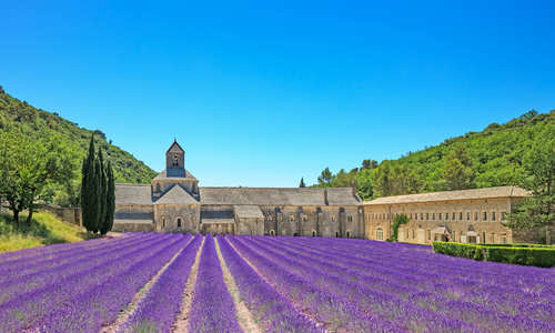 Abbey of Senanque, Vaucluse, Provence, France