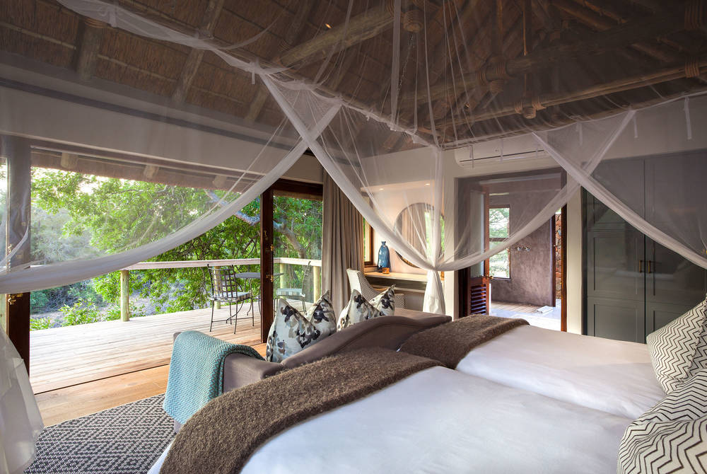 Accommodation, Thornybush Game Lodge