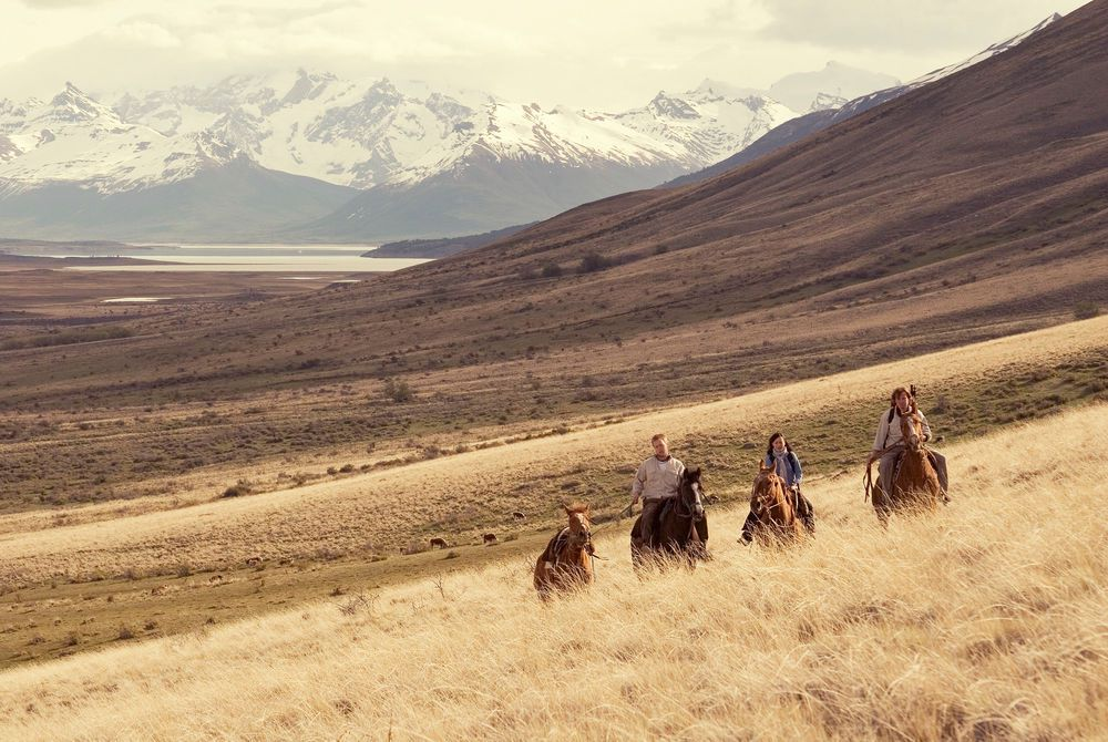 Activities, Horse-riding, Eolo, Calafate