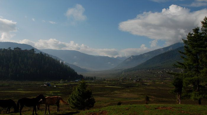 View of Phobjkha Valley, Amankora Gangtey