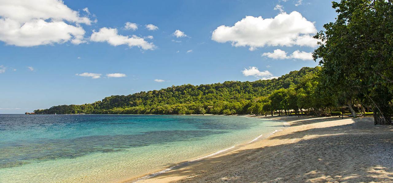 Amanwana Bay Beach