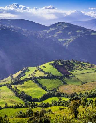 Andean landscape, Riobamba region, Ecuador