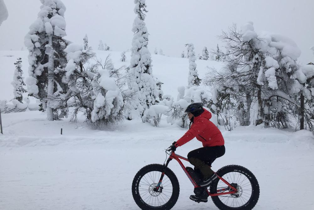 Angela fat-biking in Pyha-Luosto National Park (Finland)