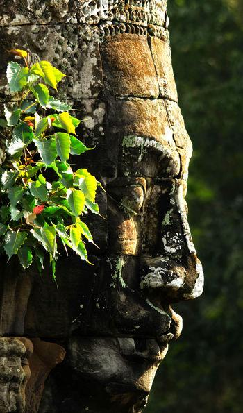 Bayon temple at Angkor Wat in Siem Reap, Cambodia