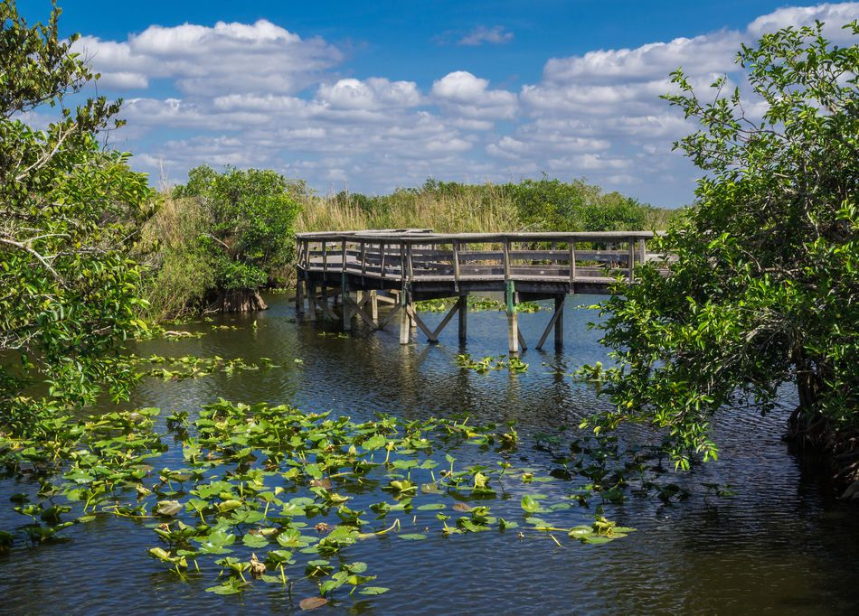 everglades national park florida