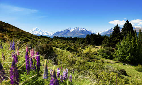 Aoraki, Mount Cook, South Island, New Zealand