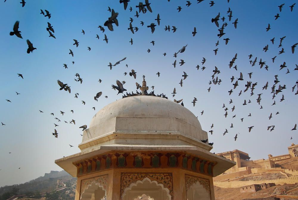 Architectural detail, Amber Fort, Rajasthan, India