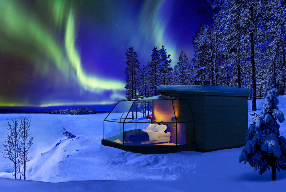 Arctic Fox Igloo & Northern Lights Break