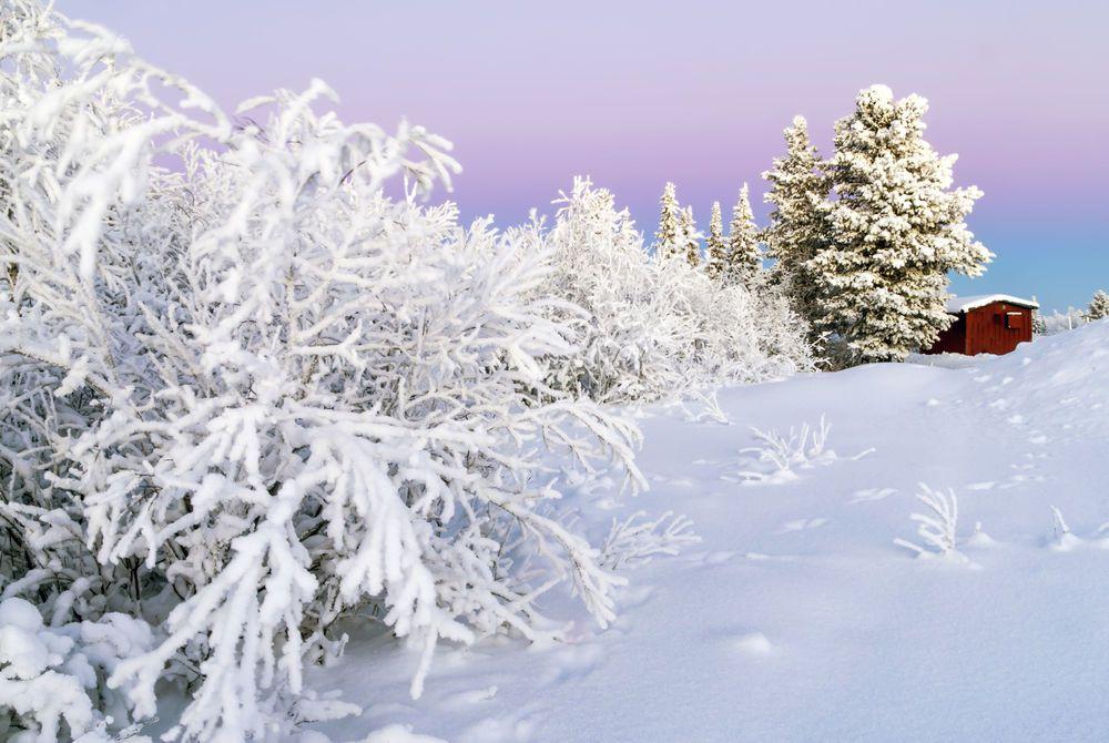 Arctic Winter Wonderland: Sunset at Kiruna near Abisko, Sweden