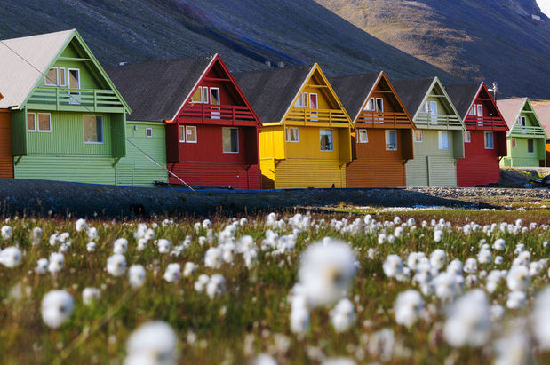 Colourful houses and Arctic files in Longyearbyen, Svalbard