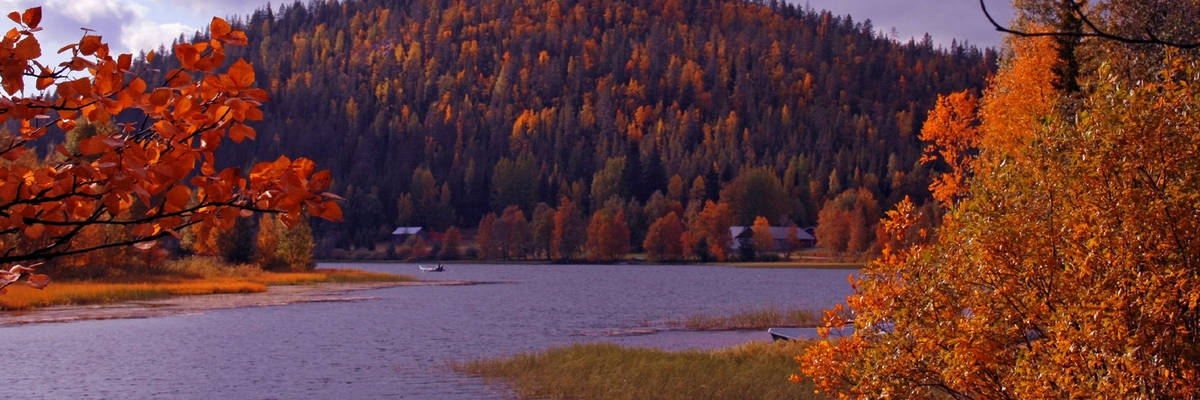 Levi: autumn in Finnish Lapland