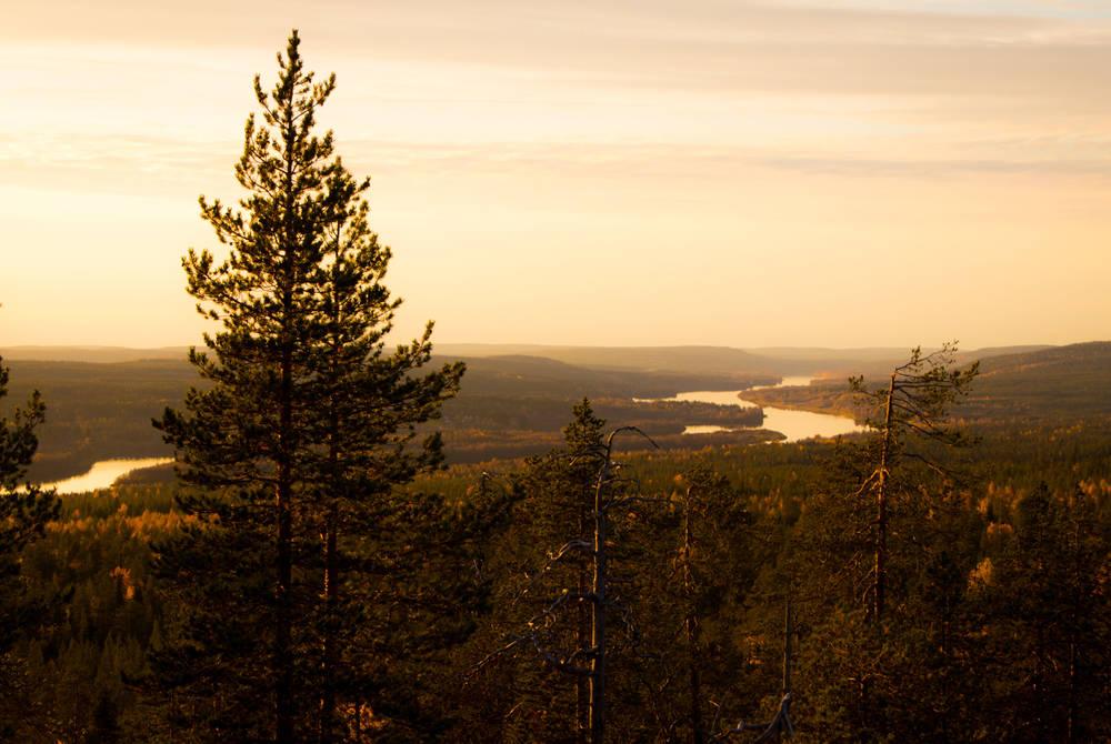Autumn in Rovaniemi, Finland