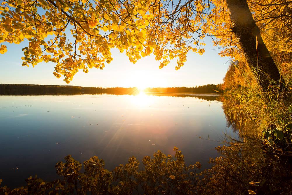 Autumn in Rovaniemi (credit: Alexander Kuznetsov)