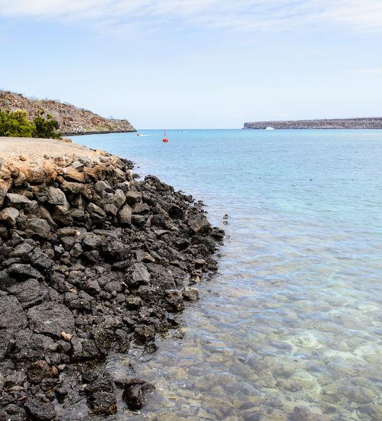 Baltra Island (South Seymour), Galapagos Island, Ecuador