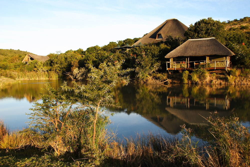 Bayethe Lodge - view over watering hole