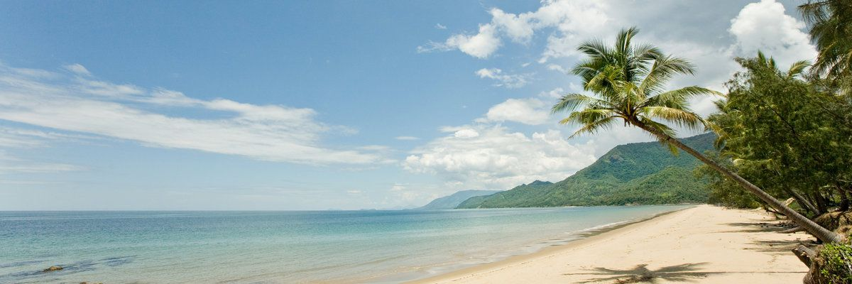 Beach, Port Douglas, Queensland, Australia