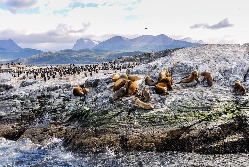 Beagle Channel, Chile–Argentina