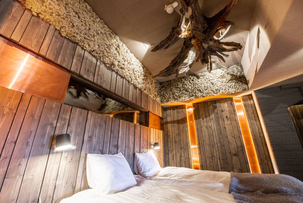 Bear Cave Suite, Iso-Syote