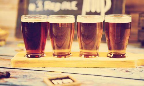 Taste the Saga Brewery Tour