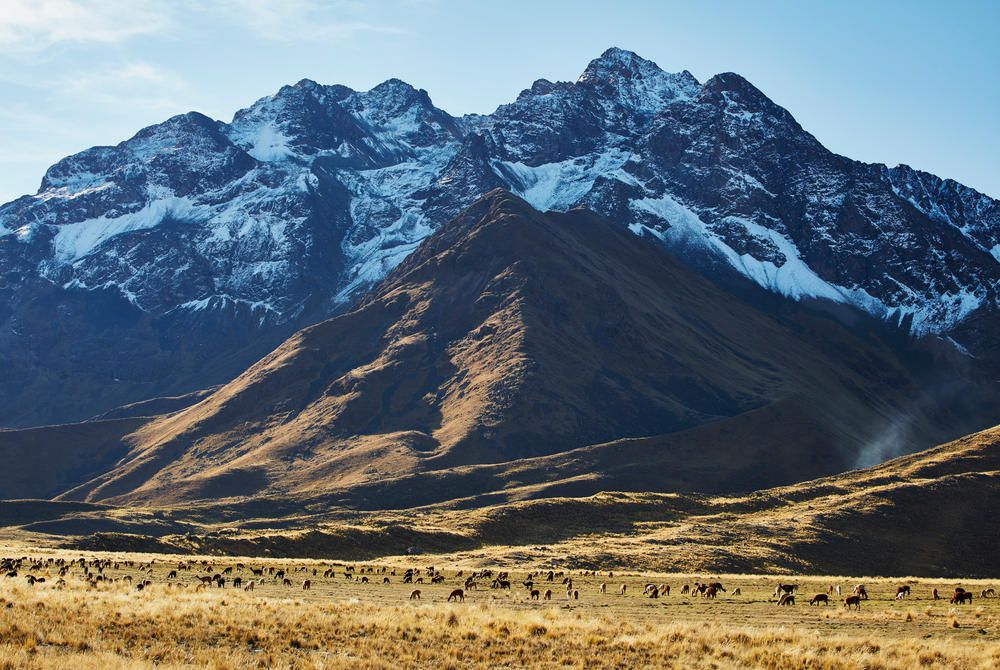 Andean scenery