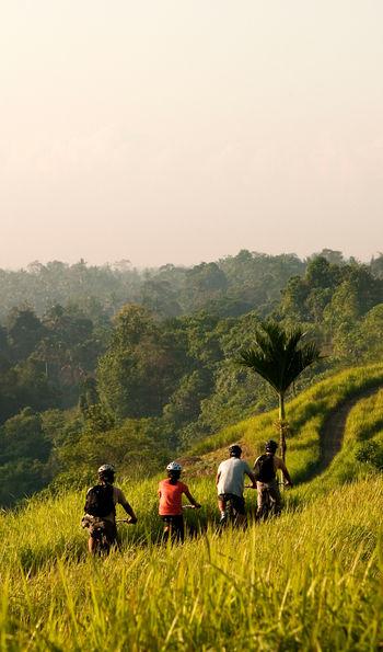 Biking through rice fields, COMO Uma Ubud