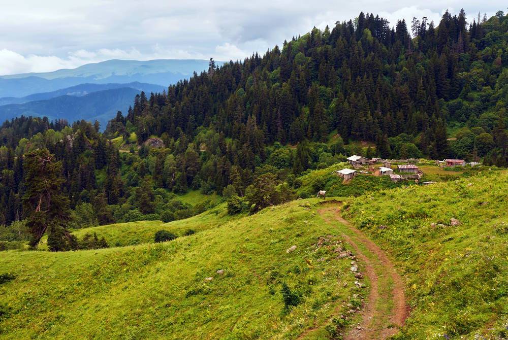 Borjomi National Park, Georgia