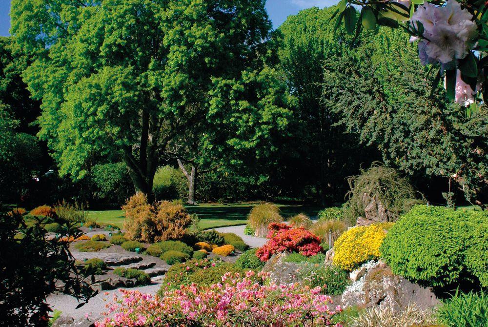 Botanic Gardens, Christchurch, South Island, New Zealand