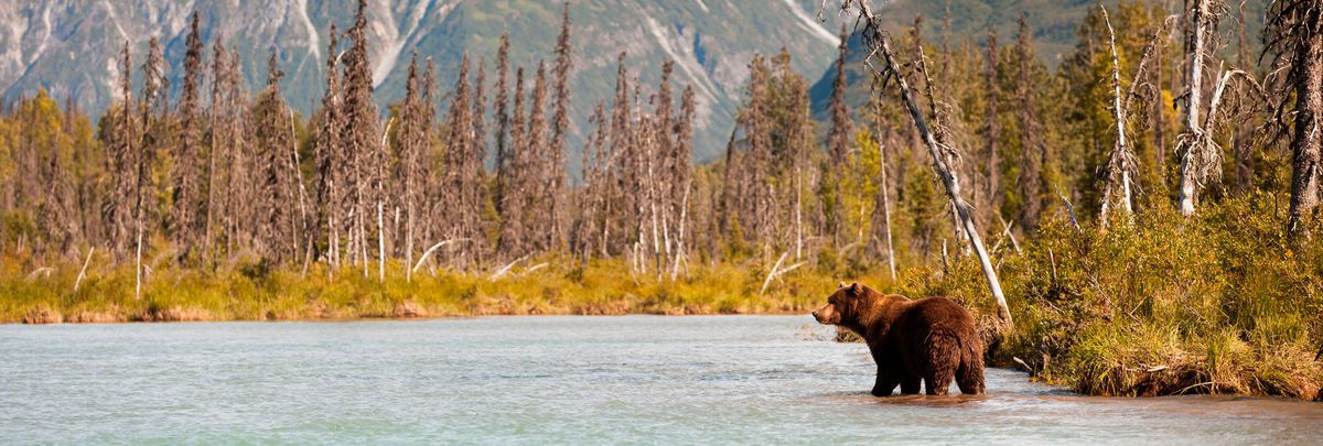 Why visit Alaska on Seabourn?