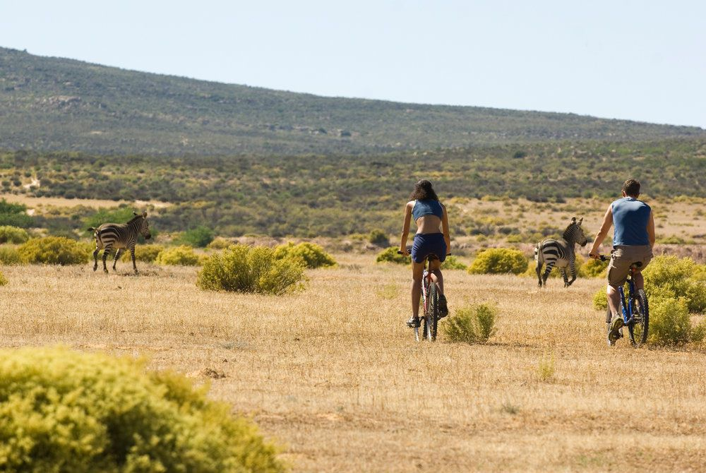 Bushman's Kloof Wilderness Reserve, Cycling
