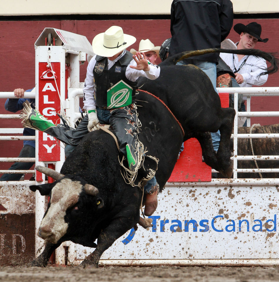 Image of the Calgary Stampede race in Canada