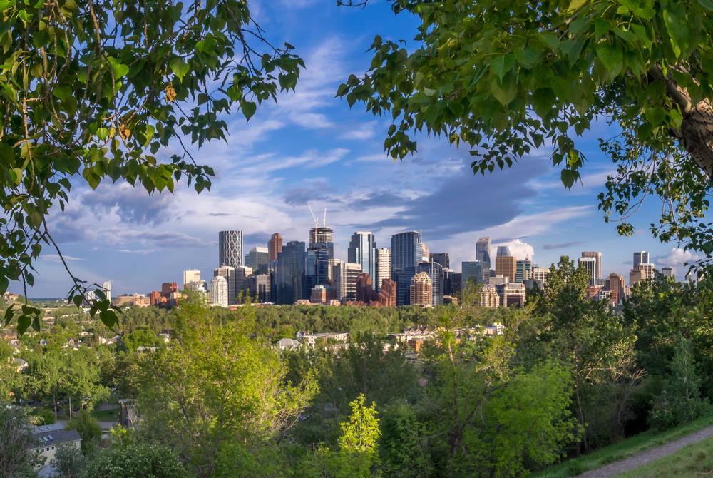 Calgary's city skyline