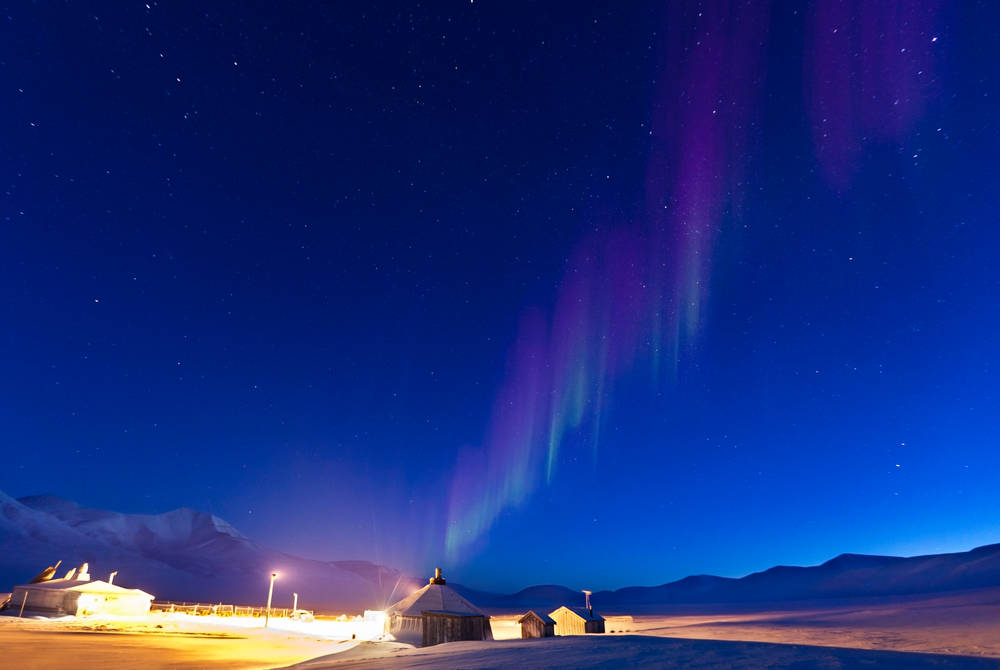 Camp Barentz, Hurtigruten Svalbard
