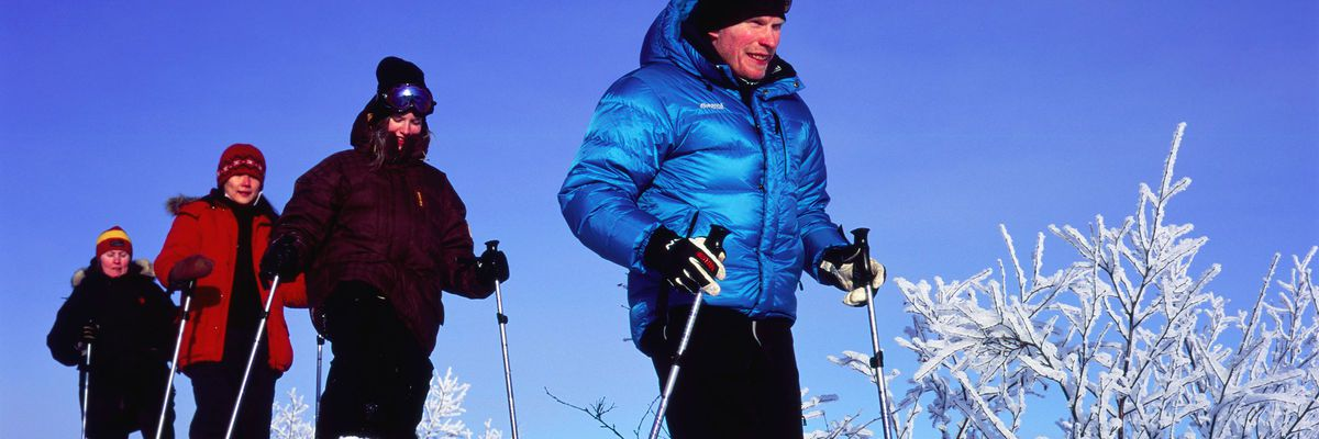 Camp_Ripan_Snowshoeing_3_PHOTO_Fredrik_Ludvigsson
