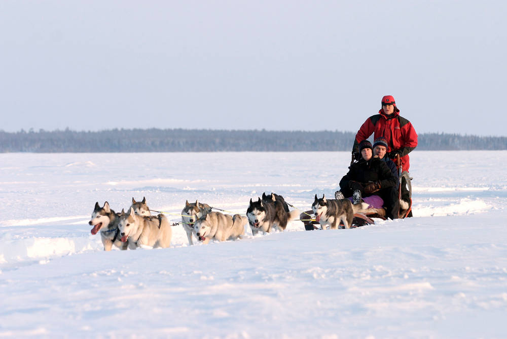 Husky safari, Brandon Lodge