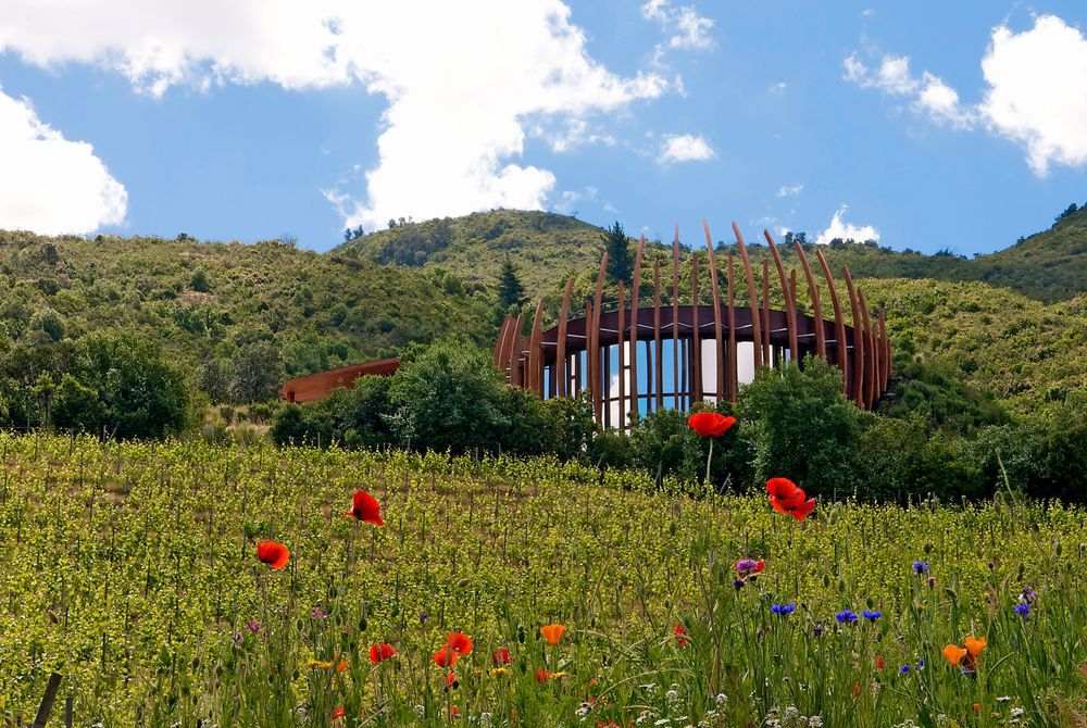 Clos Apalta Residence, Colchagua Valley