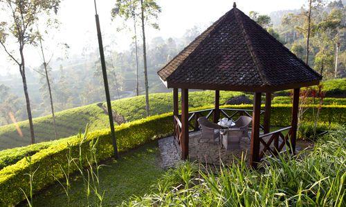 Ceylon Tea Trails, Hatton