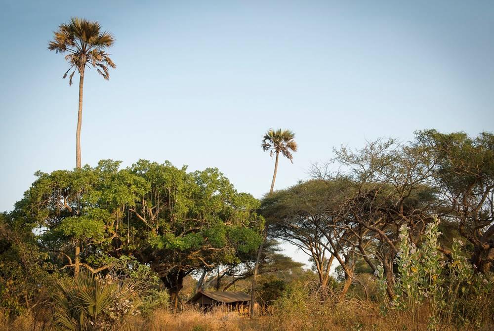 Chada Katavi, Tanzania